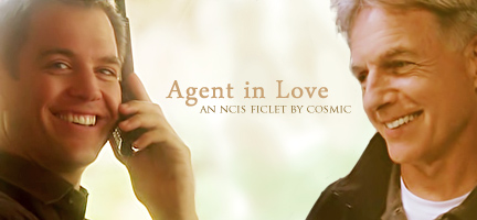 Fic agent in love pg 13 1 1 gibbs dinozzo fantasy an entire