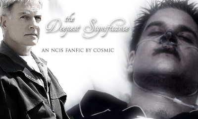 The Deepest Significance - An NCIS fanfic by Cosmic